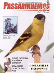 Edição 22