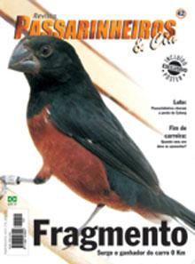 Edição 42