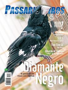 Edição 56