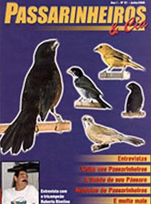 Edição 1