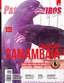 Edição 82